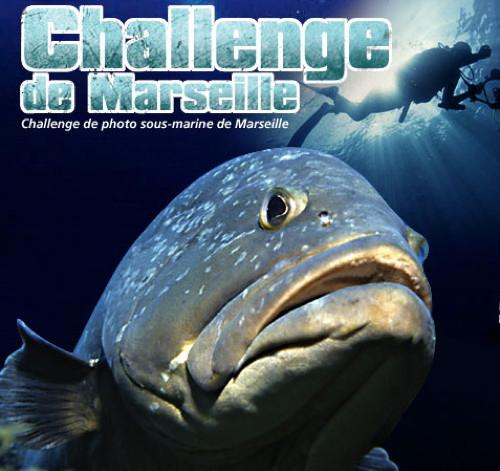 799,Challenge-de-Marseille
