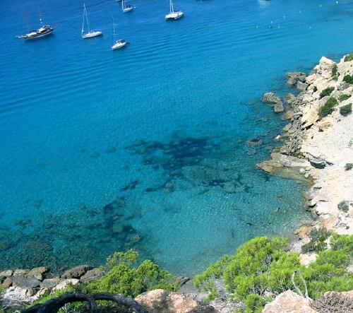 549,Ibiza
