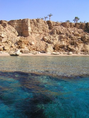 391,Sharm-el-Sheikh