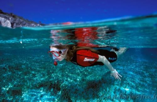 313,snorkeling